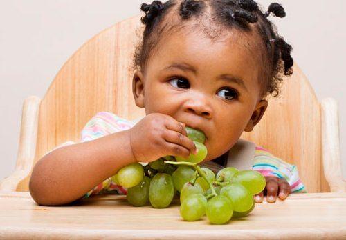 Comidas Saludables Para Bebes